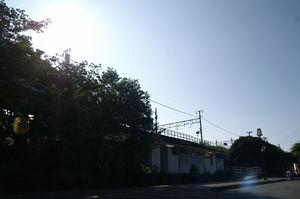 PICT3078a
